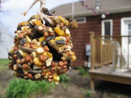 1412943105 godvnicya dlya ptahv svoyimi rukami5 Годівниця для птахів своїми руками   вироби з природного матеріалу