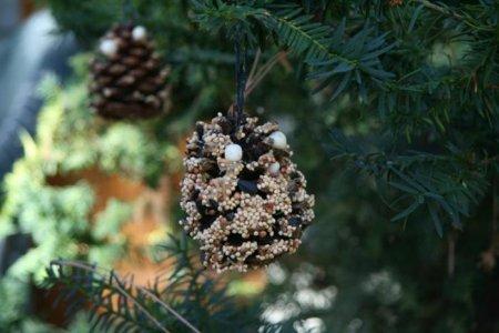1412943129 godvnicya dlya ptahv svoyimi rukami6 Годівниця для птахів своїми руками   вироби з природного матеріалу