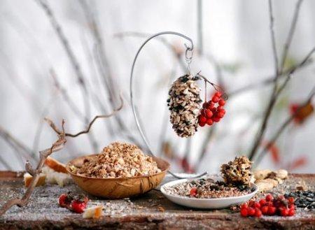 1412943144 godvnicya dlya ptahv svoyimi rukami4 Годівниця для птахів своїми руками   вироби з природного матеріалу