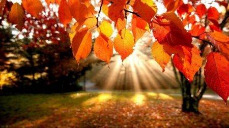 1413131675 narodn prikmeti pro osn Народні прикмети про осінь: Осінні прикмети і забобони