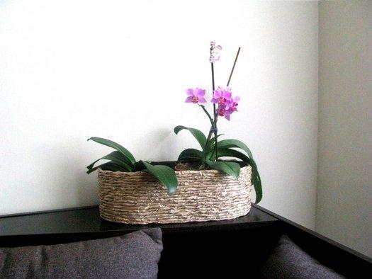 Прикраса квіткових горщиків з крафт паперу.