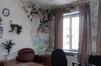 1419504436 yak vivesti gribok z stni Як вивести грибок зі стіни?