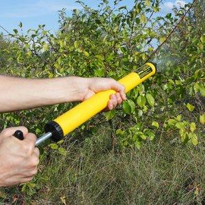 Як захистити сад від шкідників