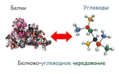 Дієта буч. Білково вуглеводне чергування. Дієта, заснована на чергуванні в меню білків і вуглеводів.