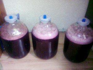 Як робити вино з вишень в домашніх умовах