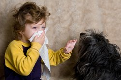 Алергія у дітей: її різновиди, методи лікування й загальні рекомендації