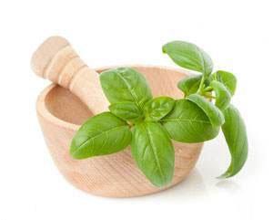 Базилік   корисні властивості, склад, калорійність, а також протипоказання і шкоду до вживання