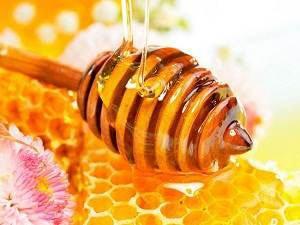 Бджоли і їх \суперпродукти\, користь продуктів бджільництва для людини