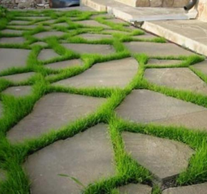 formi dlya sadovih dorzhok snuyuch vidi tehnologya vigotovlennya dorzhok 3 Форми для садових доріжок: існуючі види, технологія виготовлення доріжок
