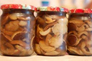 Маслюки, мариновані на зиму