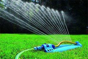 Робимо газон правильно: різновиди газонів, а так само інструкція по самостійному влаштування газону