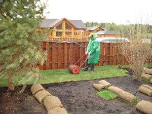 Рулонні газони: переваги і недоліки, існуючі типи, вартість, етапи укладання