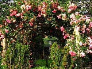 Садові арки: застосування, різновиди, матеріали виготовлення, місця для облаштування