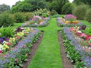 Садові доріжки: види, характеристики, варіанти дизайну, фото, етапи укладання