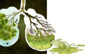 Що відбувається, коли кидаєш палити   основні процеси, які протікають при відмові від куріння