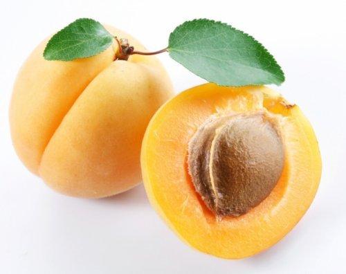 Цілющі властивості абрикосових кісточок