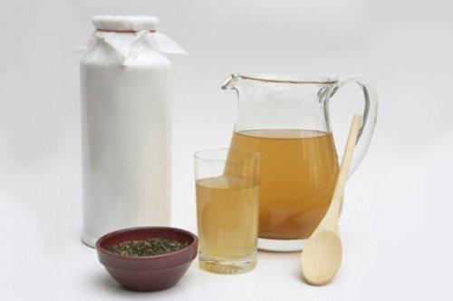 Корисні властивості чайного гриба