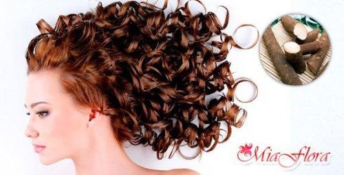 Корінь лопуха для волосся: відгуки та поради щодо застосування