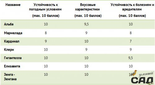 Кращі сорти полуниці для Підмосков\я і середньої смуги Росії: огляд найбільш якісних