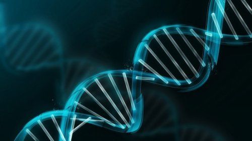 Спадкові захворювання: що потрібно знати про свою генетики