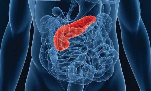 Як зберегти підшлункову залозу здорової