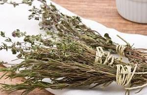 Трави для лікування від алкоголізму, відгуки і протипоказання. Застосування трав: Копитняк, Кукольник, Чебрець, Любисток та ін.