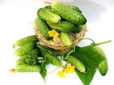 Заготовки на зиму з огірків