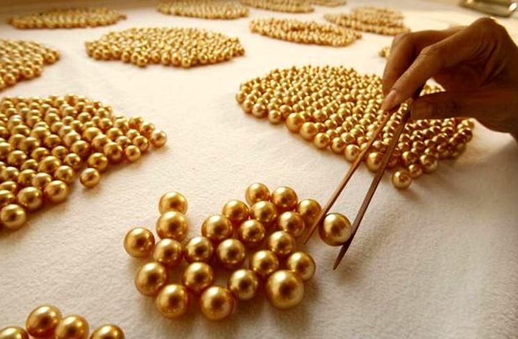 Як утворюються перлини