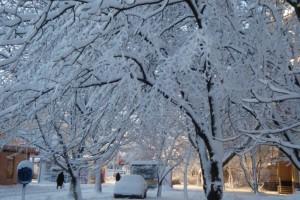 Яка буде зима в 2015-2016 в Україні