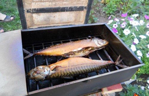 Как коптить рыбу своими руками 759