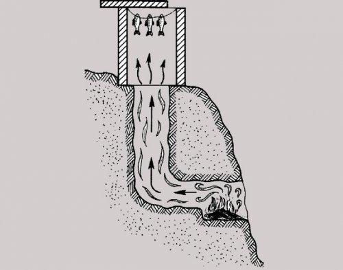 Як закоптити рибу на природі