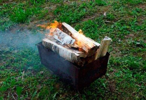 Яку вибрати деревину для копчення