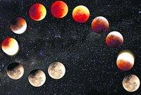 Місячний календар городника на червень 2015