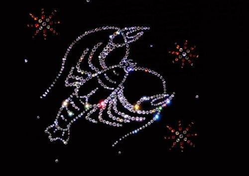 Гороскоп на 2017 рік для раків