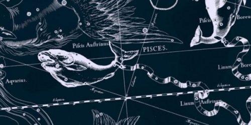 Гороскоп на 2017 рік для риб