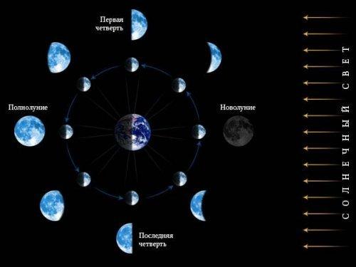 Місячний календар садівника і городника 2017 року