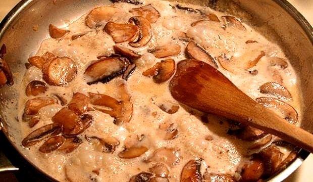 Белые грибы со сметаной рецепты с фото