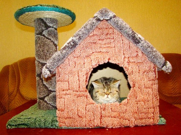 Домик для кошки своими руками пошаговая 86