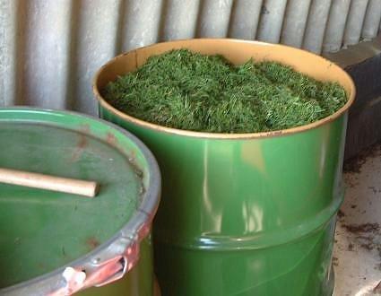 Как сделать перегной из травы в мешках 153