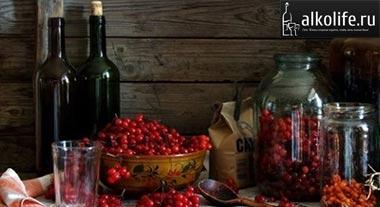 Красная смородина на самогоне в домашних условиях 559