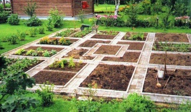 хуторе из чего сделаны дорожки на клубничных грядках дубинка станет отличным
