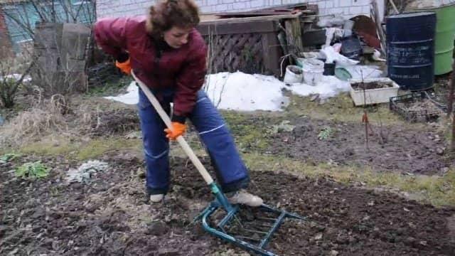 85f6c0188cafef52e7a5cdff48f6abf8 Диво лопата для копання землі d73d626b81322