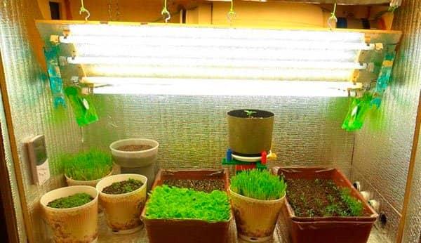 Подсветка для растений своими руками 78