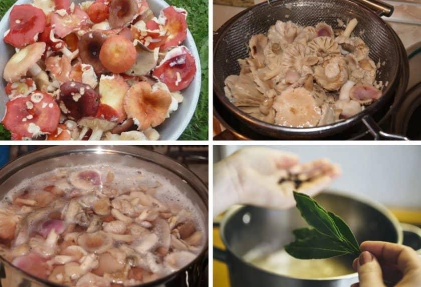 Суп из сыроежек рецепт с фото